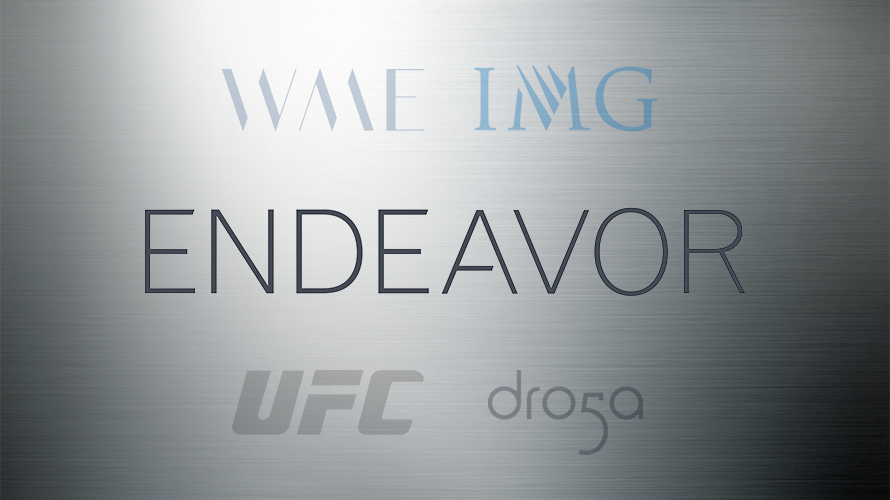 Endeavor earns profit thanks largely to UFC in first earnings report after IPO