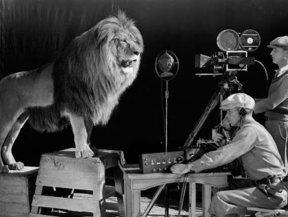 MGM выставят на продажу — кто станет покупателем?